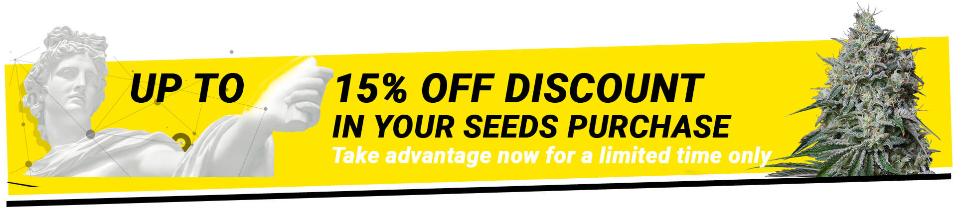 promotion Gea Seeds