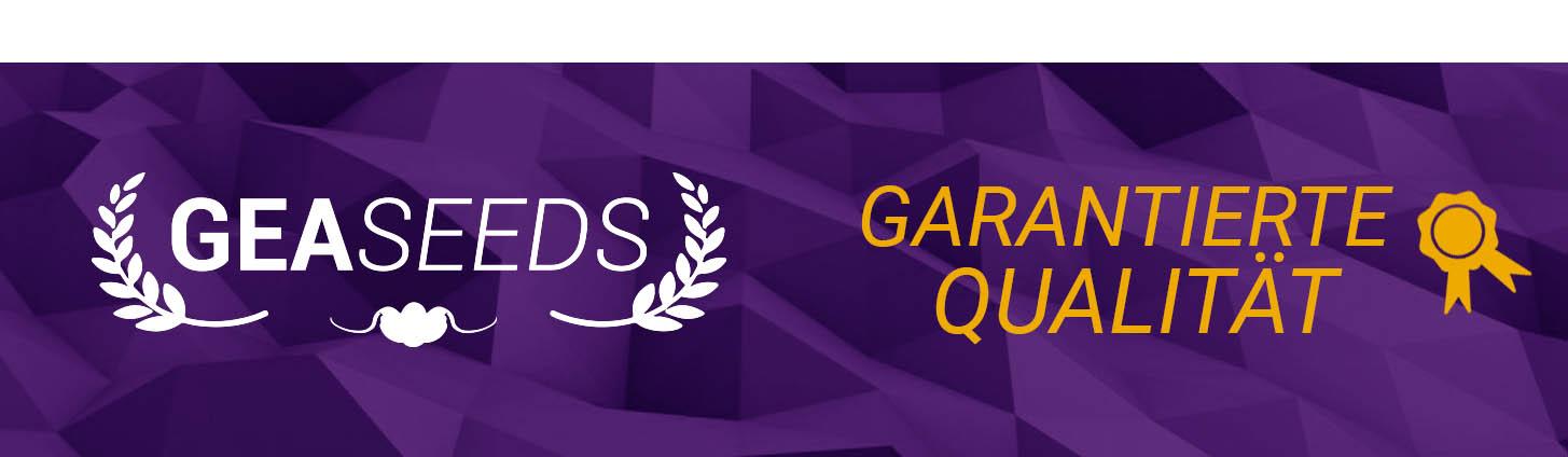 Gea Seeds garantierte Qualität