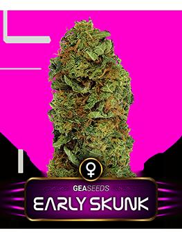 Early Skunk Gea Seeds