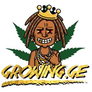 Growing Ge